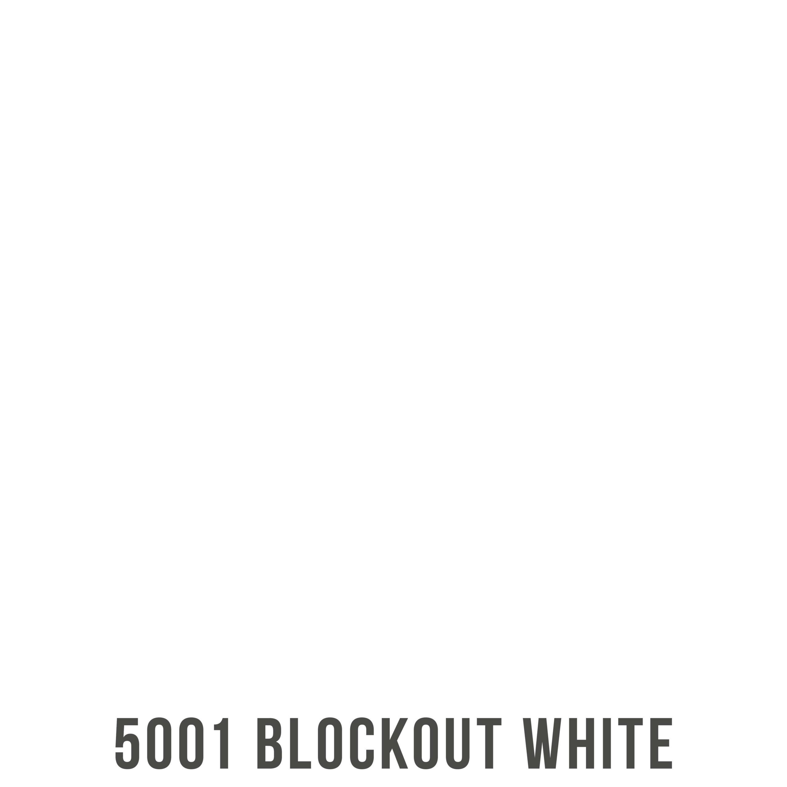 5001 scaled